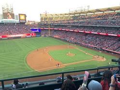 MLB ShopOCS